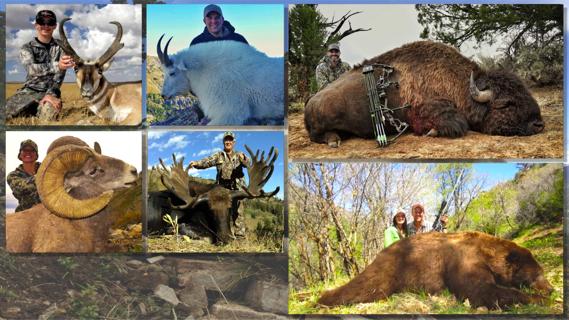 Big Game Hunts