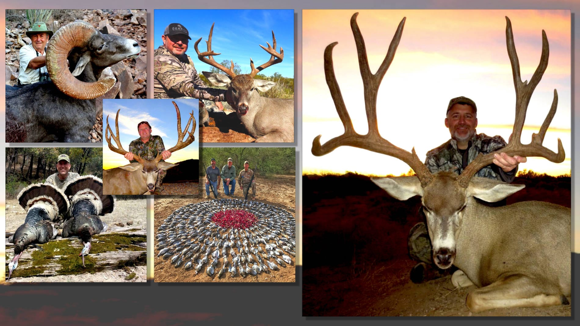 Sonora Hunting